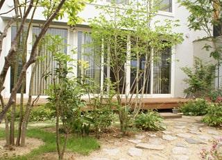 モダン住宅でつくる雑木の庭